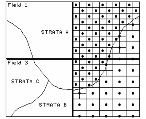Map Analysis Topic 3: Considerations in Sampling Design